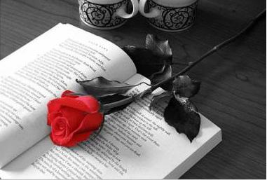 pide un deseo - Página 5 Rosa_y_libro